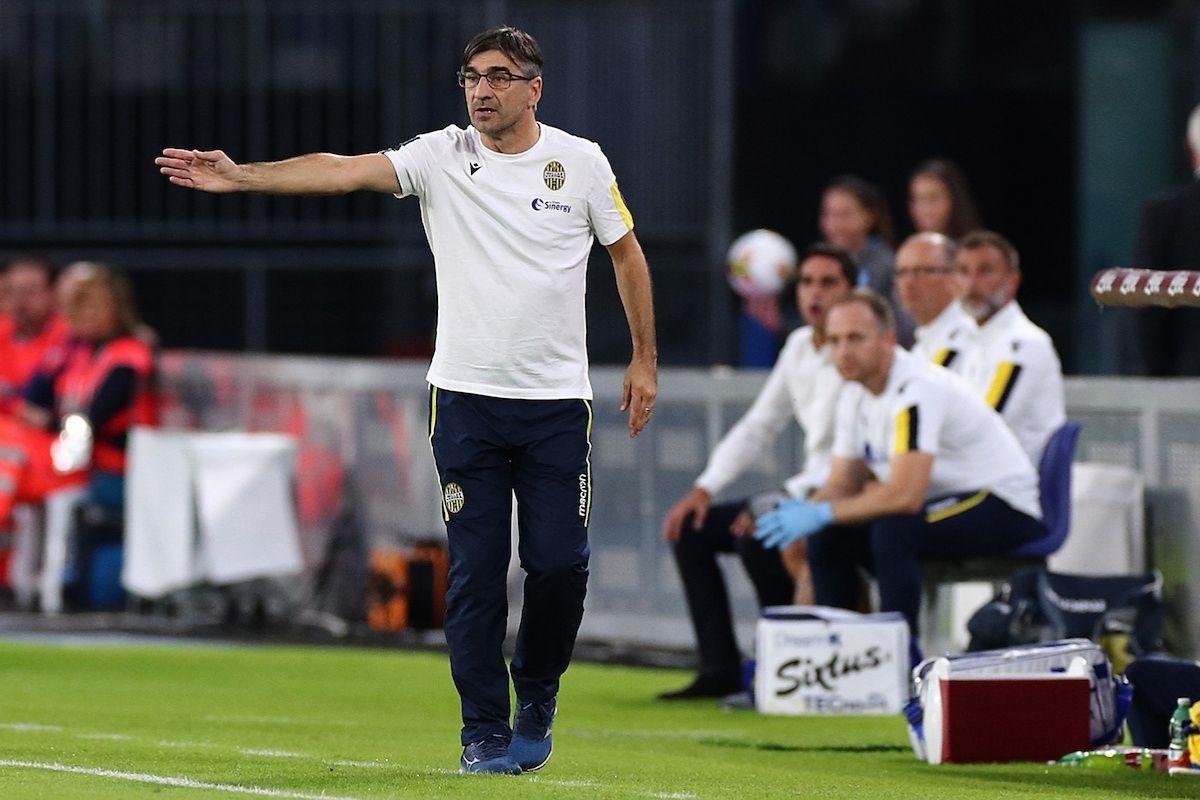 allenatore fiorentina